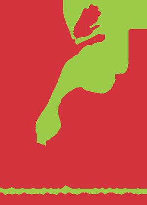 Advanced Coding Service Logo